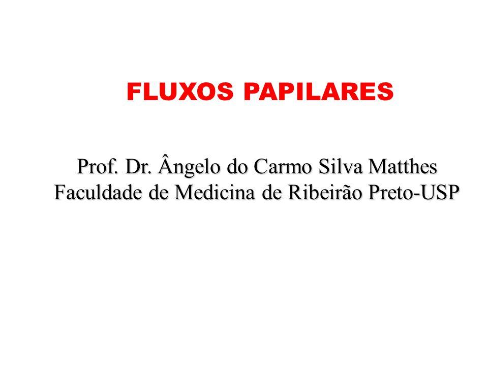 Prof. Dr. Ângelo do Carmo Silva Matthes