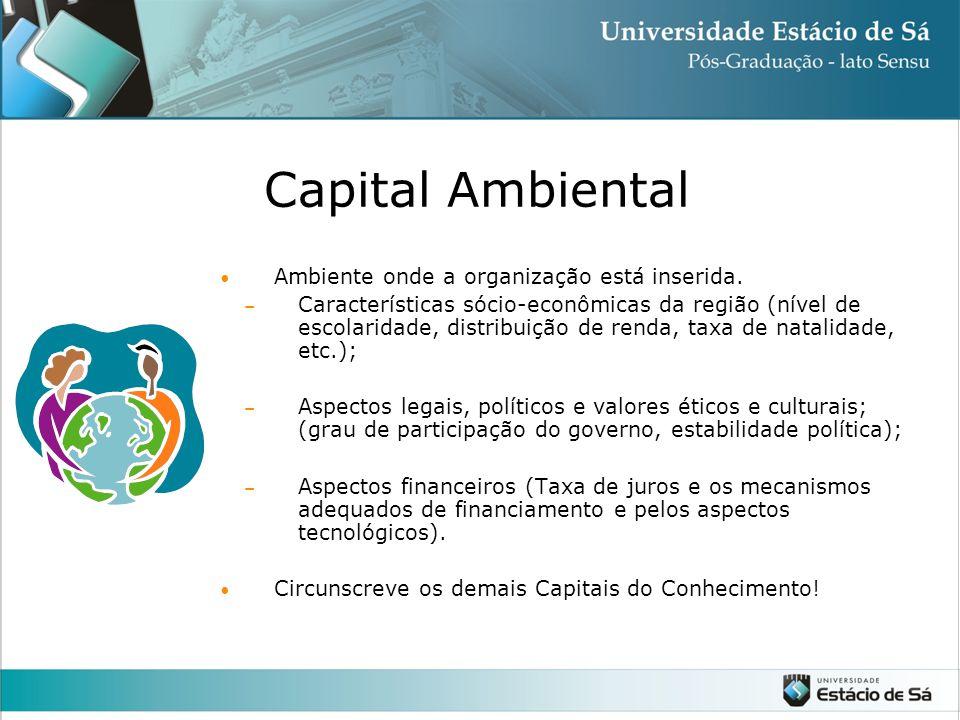 Capital Ambiental Ambiente onde a organização está inserida.