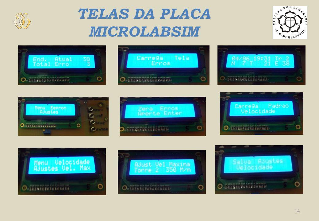 PLACA MICROLABSIM