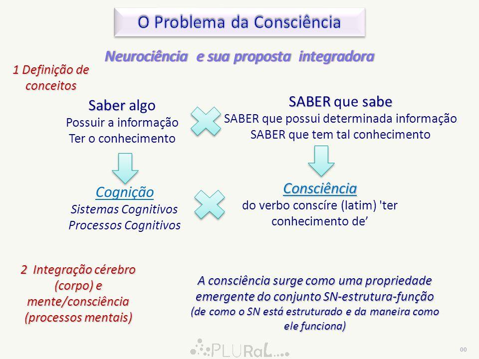 O Problema da Consciência