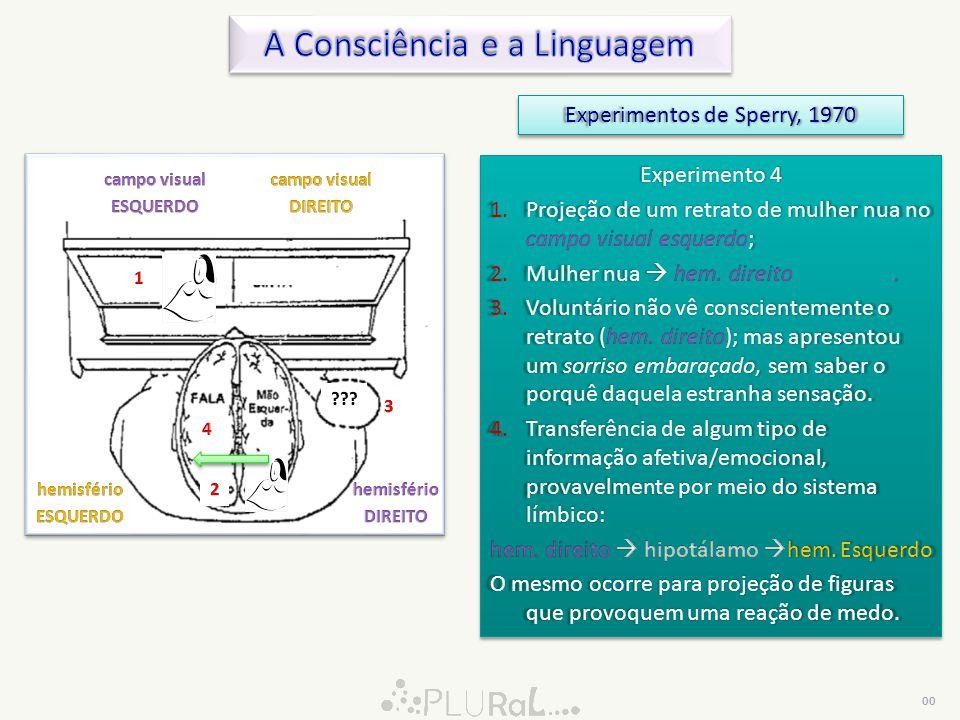 A Consciência e a Linguagem