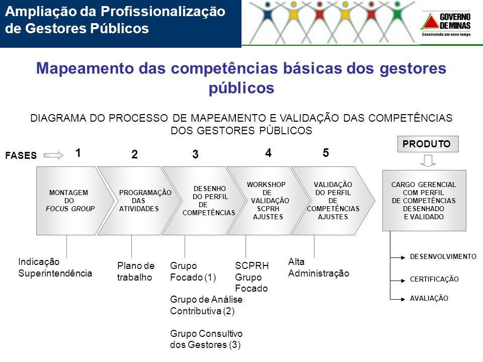 Mapeamento das competências básicas dos gestores públicos