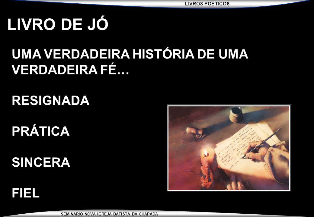 LIVRO DE JÓ UMA VERDADEIRA HISTÓRIA DE UMA VERDADEIRA FÉ… RESIGNADA