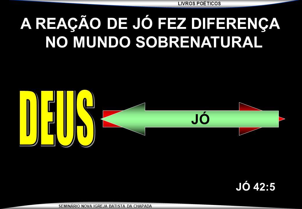 A REAÇÃO DE JÓ FEZ DIFERENÇA NO MUNDO SOBRENATURAL