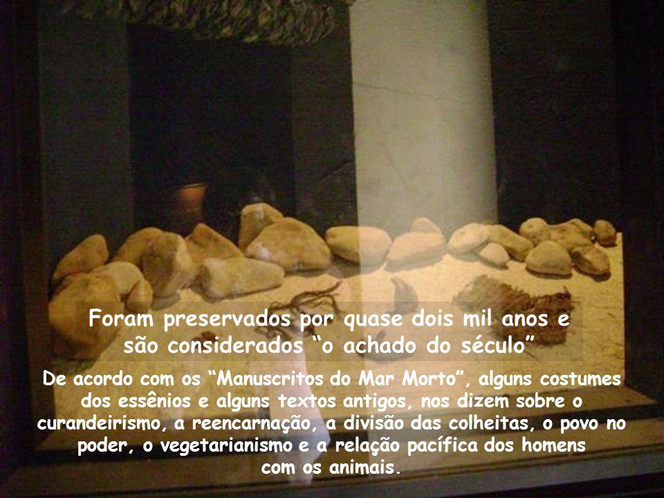 Foram preservados por quase dois mil anos e são considerados o achado do século