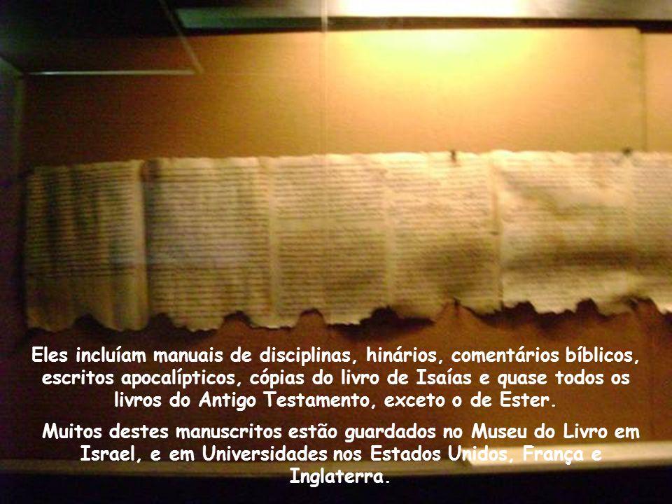 Eles incluíam manuais de disciplinas, hinários, comentários bíblicos, escritos apocalípticos, cópias do livro de Isaías e quase todos os livros do Antigo Testamento, exceto o de Ester.