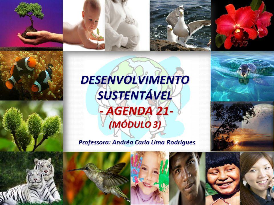 DESENVOLVIMENTO SUSTENTÁVEL Professora: Andréa Carla Lima Rodrigues