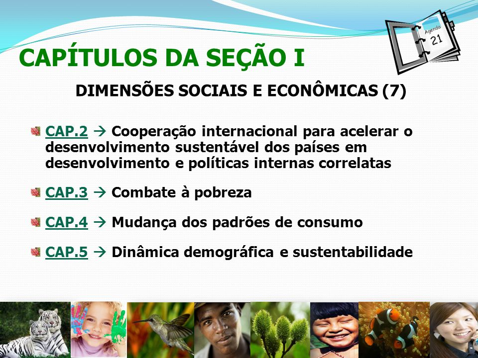 DIMENSÕES SOCIAIS E ECONÔMICAS (7)