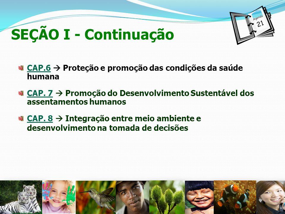 SEÇÃO I - Continuação CAP.6  Proteção e promoção das condições da saúde humana.