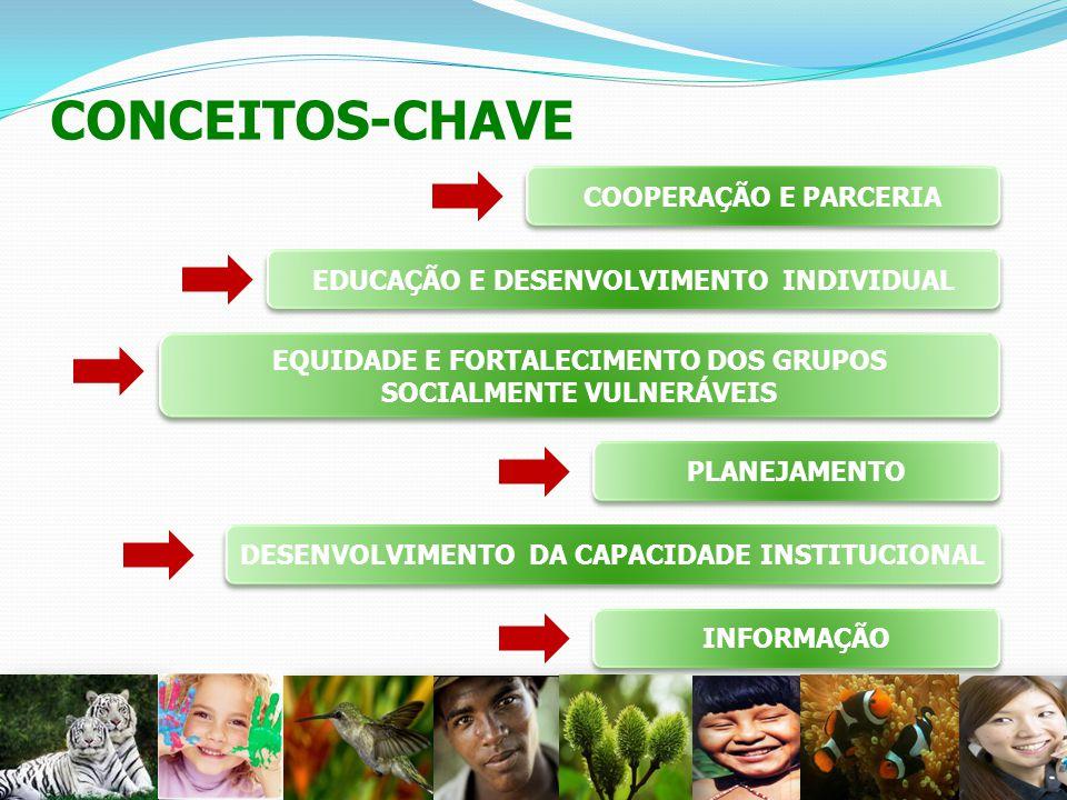 CONCEITOS-CHAVE COOPERAÇÃO E PARCERIA