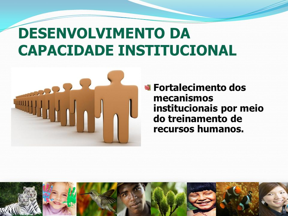 DESENVOLVIMENTO DA CAPACIDADE INSTITUCIONAL