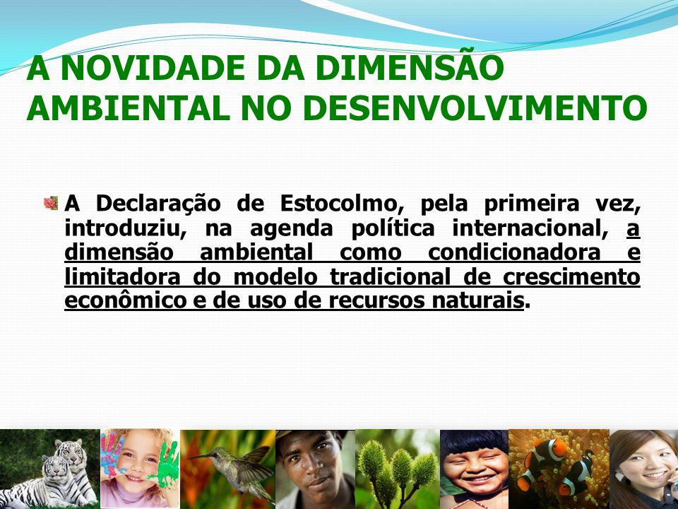 A NOVIDADE DA DIMENSÃO AMBIENTAL NO DESENVOLVIMENTO