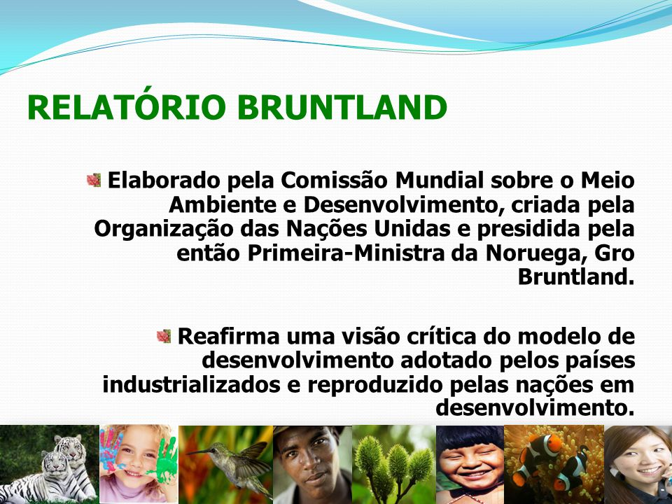 RELATÓRIO BRUNTLAND