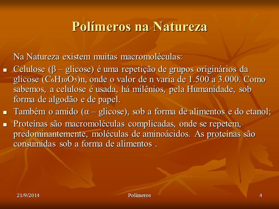 Polímeros na Natureza Na Natureza existem muitas macromoléculas: