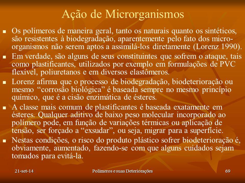 Ação de Microrganismos