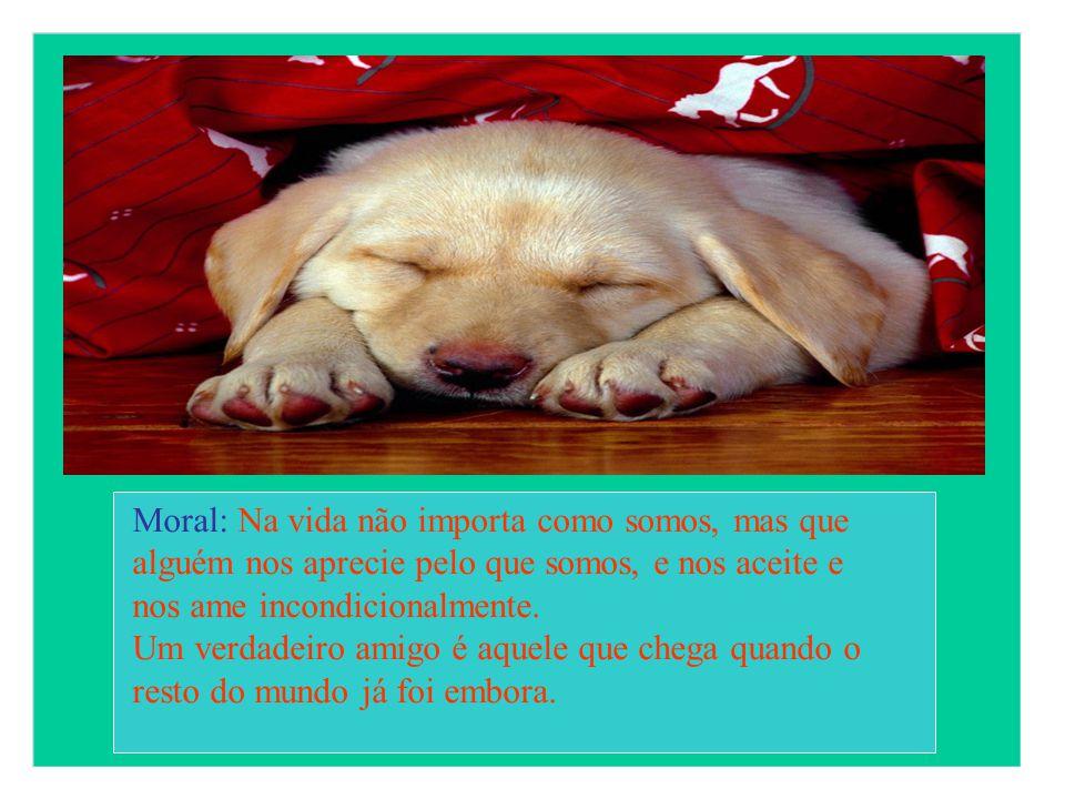 Moral: Na vida não importa como somos, mas que alguém nos aprecie pelo que somos, e nos aceite e nos ame incondicionalmente.