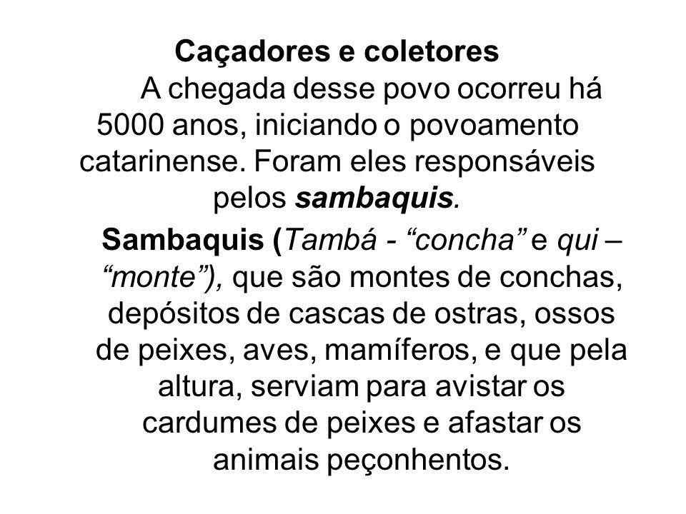 Caçadores e coletores A chegada desse povo ocorreu há 5000 anos, iniciando o povoamento catarinense. Foram eles responsáveis pelos sambaquis.