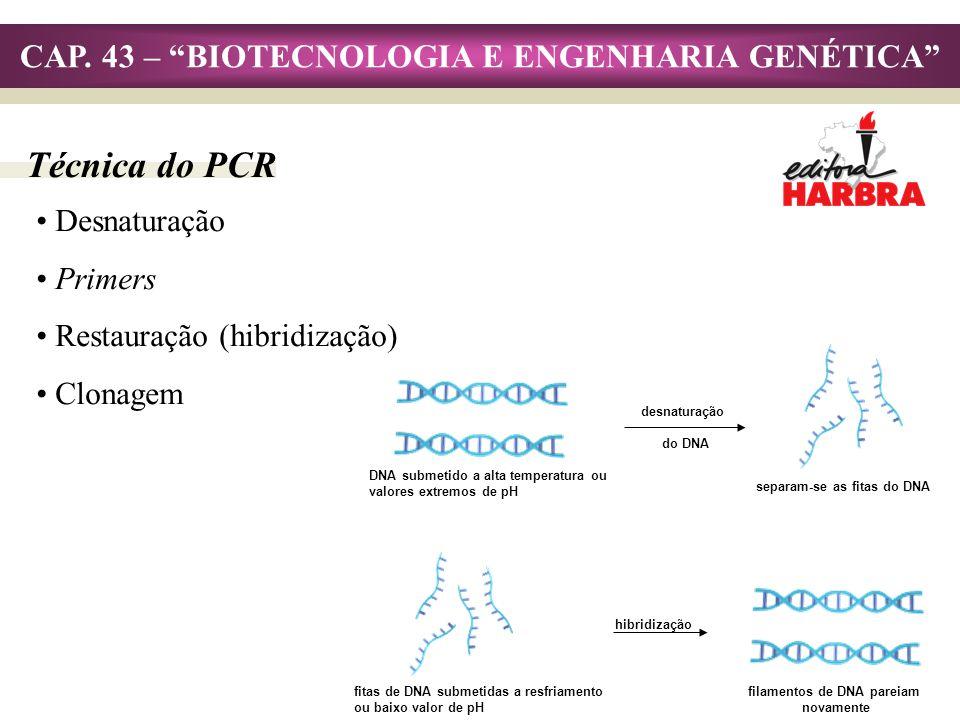 CAP. 43 – BIOTECNOLOGIA E ENGENHARIA GENÉTICA