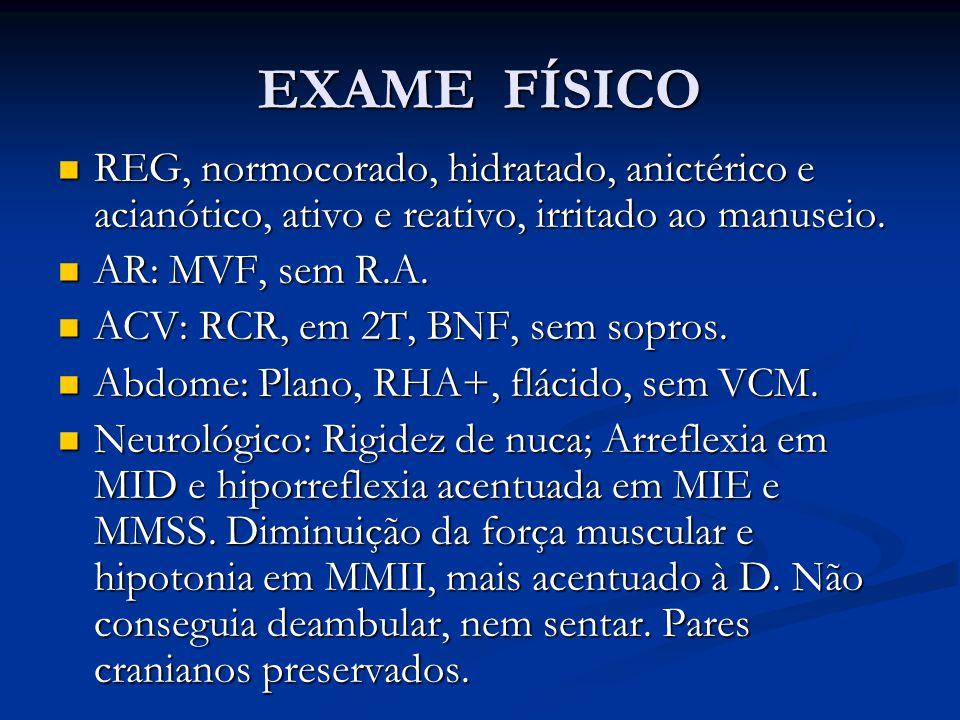 EXAME FÍSICO REG, normocorado, hidratado, anictérico e acianótico, ativo e reativo, irritado ao manuseio.