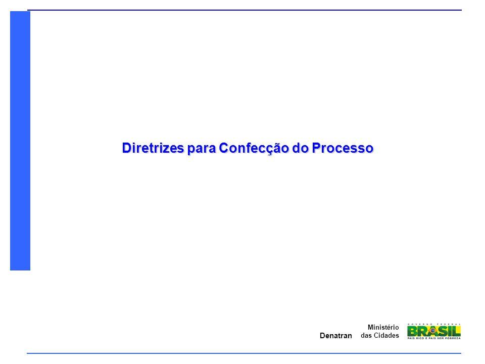 Diretrizes para Confecção do Processo