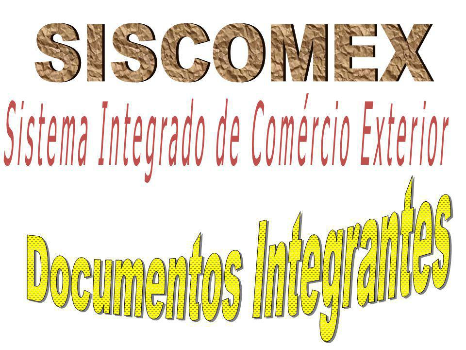 Documentos Integrantes