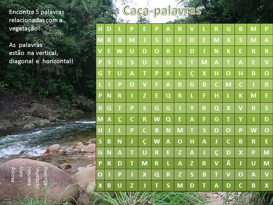 Caça-palavras Encontre 5 palavras relacionadas com a vegetação!
