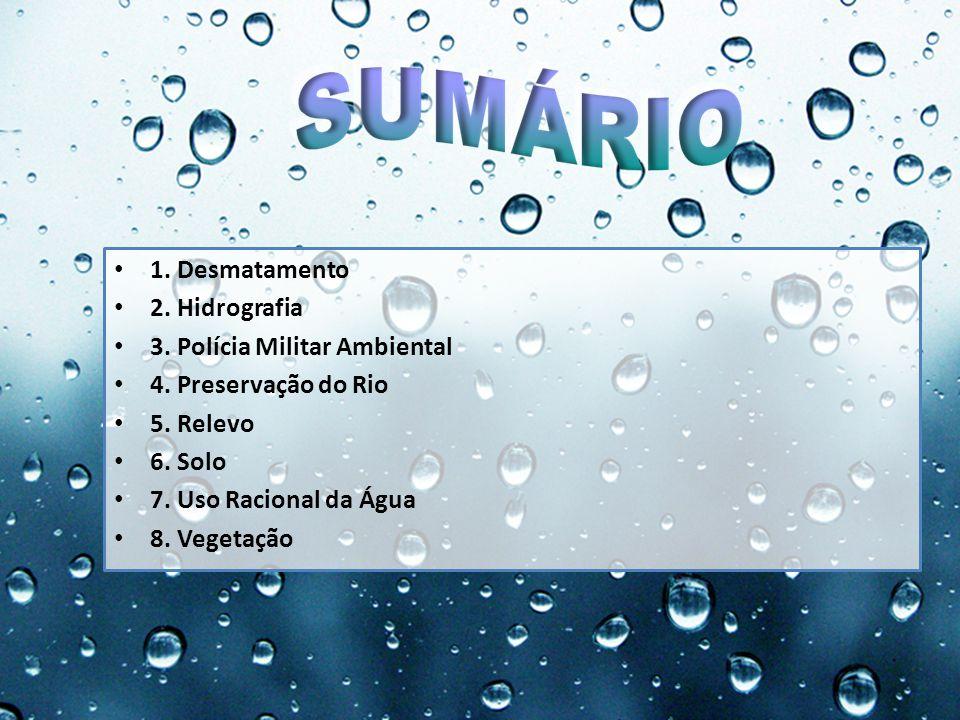 1. Desmatamento 2. Hidrografia. 3. Polícia Militar Ambiental. 4. Preservação do Rio. 5. Relevo. 6. Solo.
