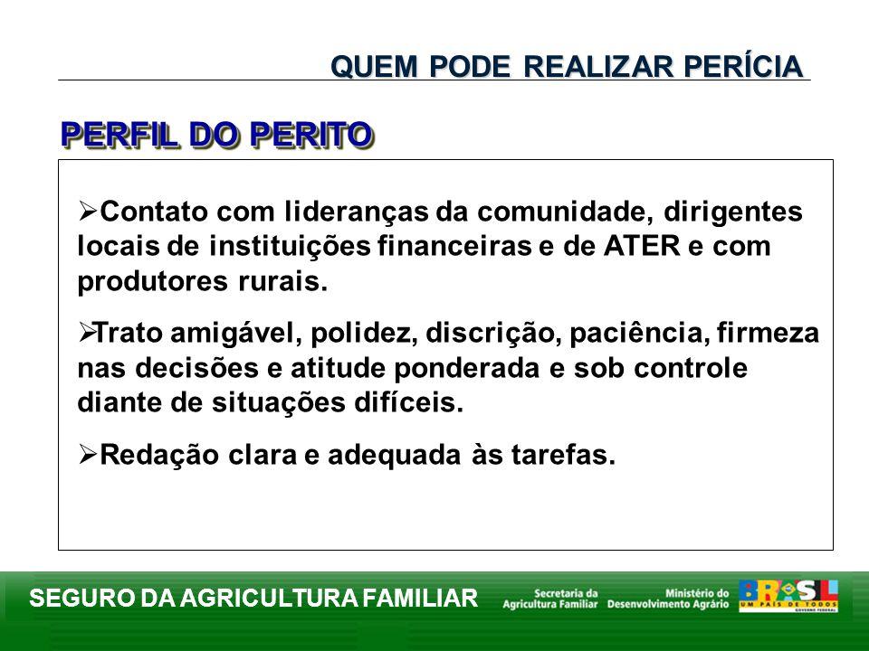 PERFIL DO PERITO QUEM PODE REALIZAR PERÍCIA