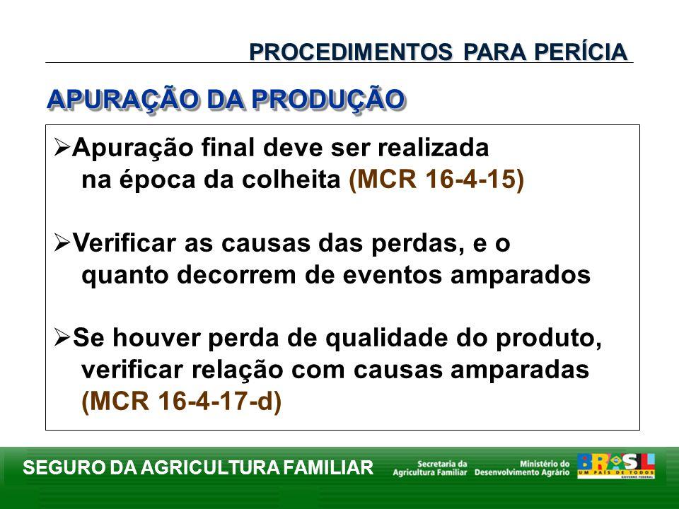 Apuração final deve ser realizada na época da colheita (MCR 16-4-15)
