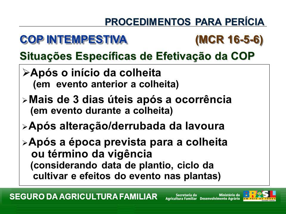 COP INTEMPESTIVA (MCR 16-5-6)