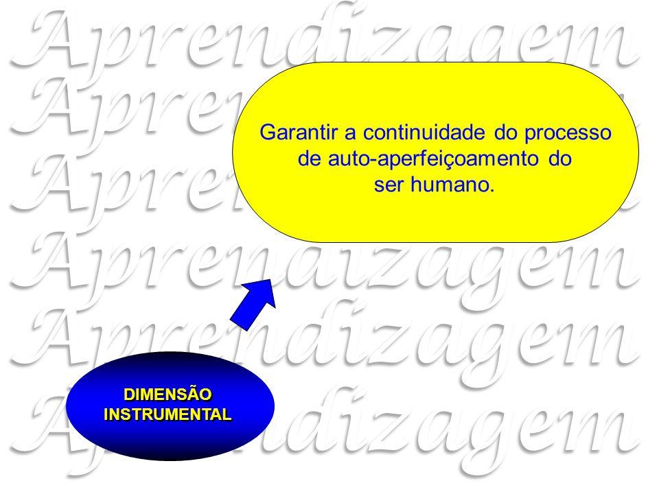 DIMENSÃO INSTRUMENTAL