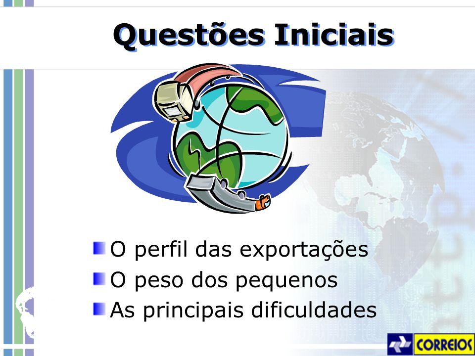 Questões Iniciais O perfil das exportações O peso dos pequenos