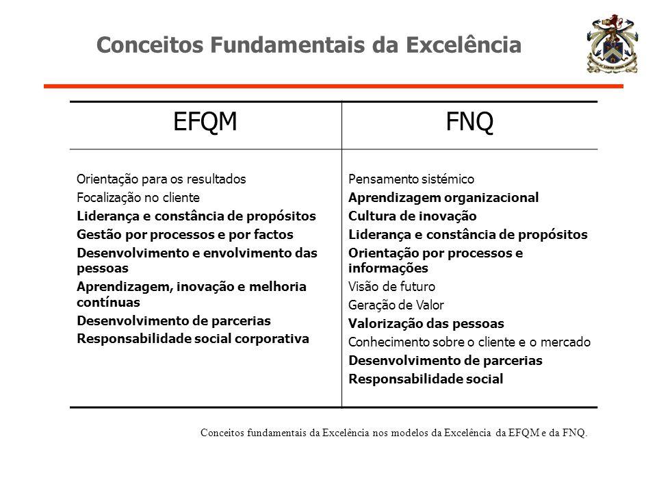 Conceitos Fundamentais da Excelência