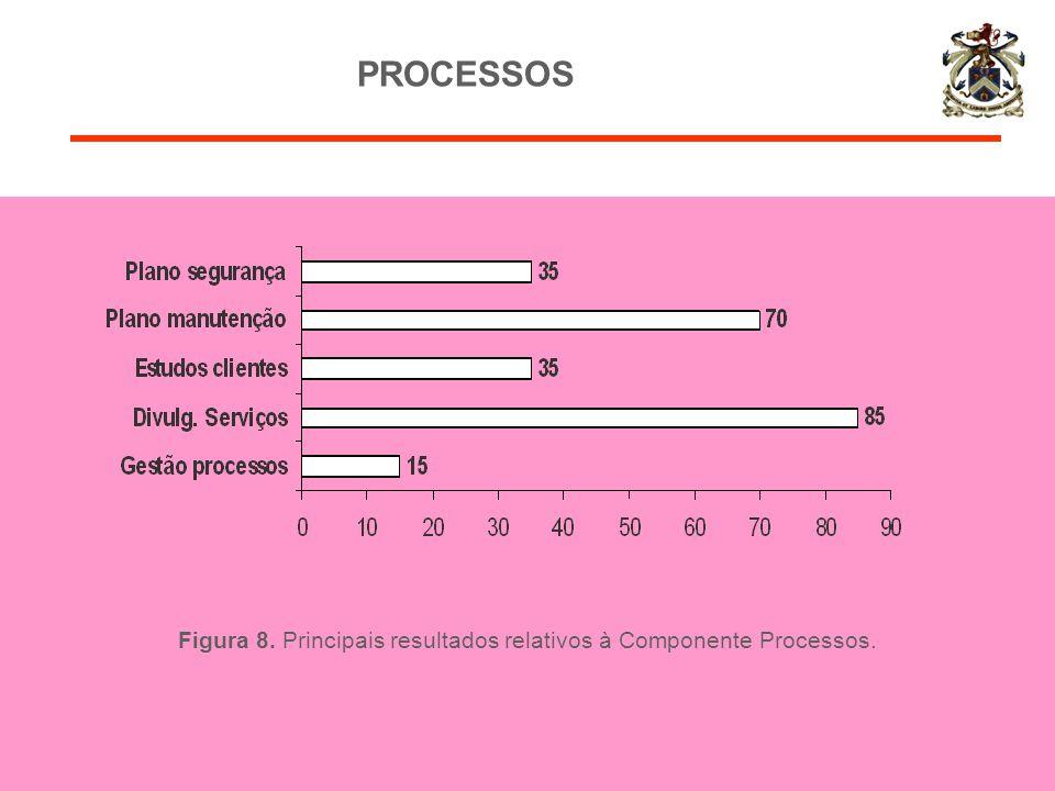 Figura 8. Principais resultados relativos à Componente Processos.