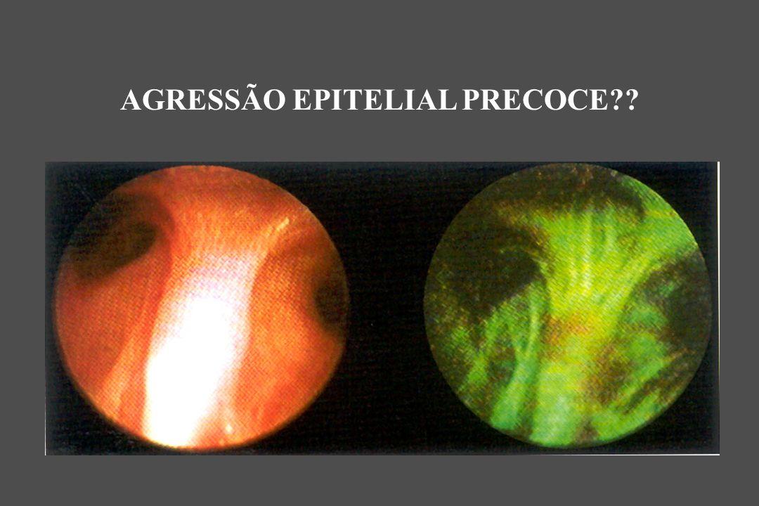 AGRESSÃO EPITELIAL PRECOCE