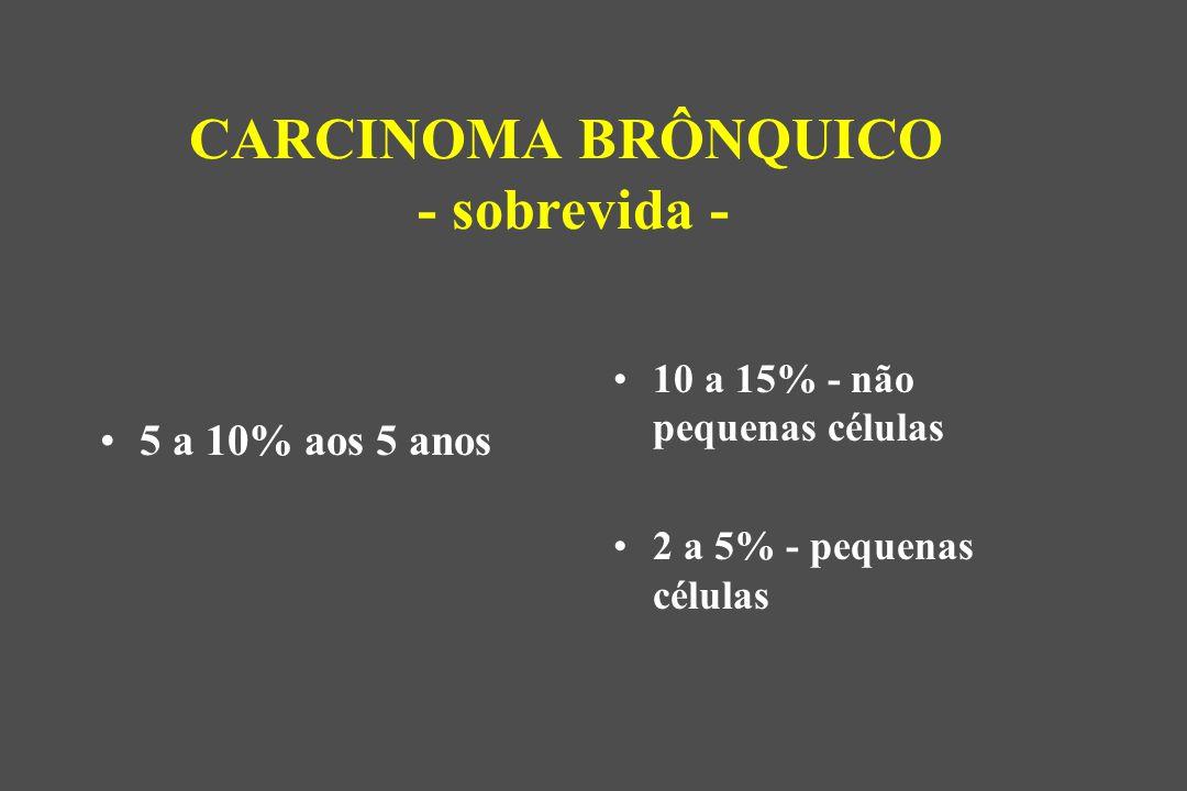 CARCINOMA BRÔNQUICO - sobrevida -