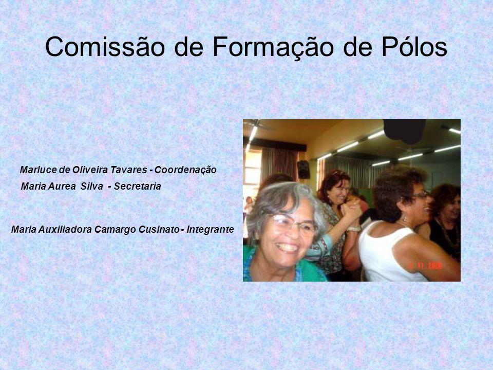 Comissão de Formação de Pólos