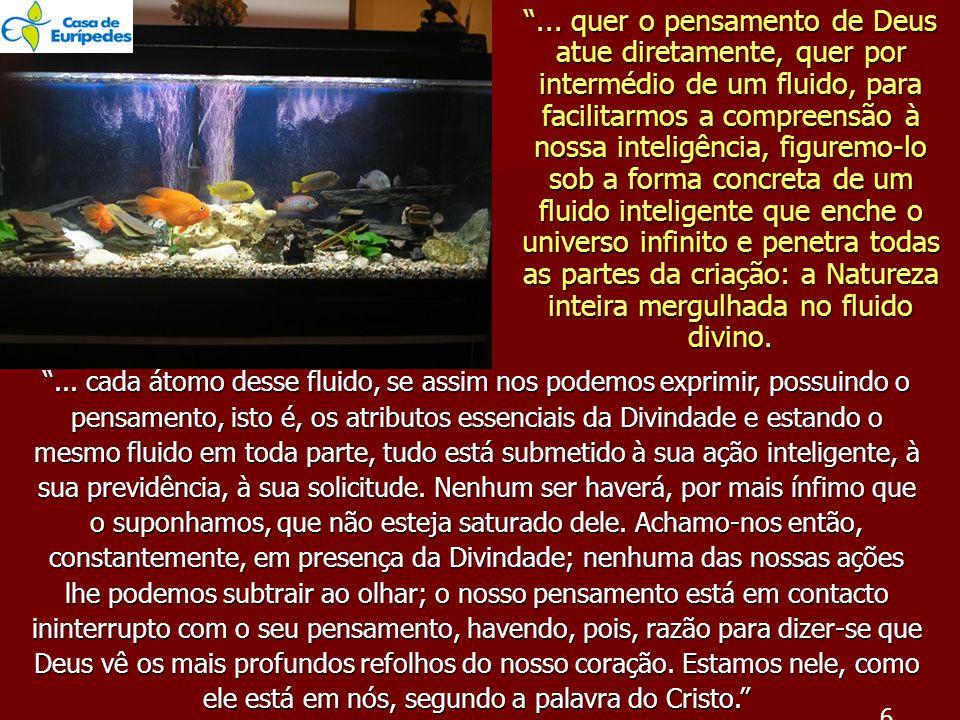 ... quer o pensamento de Deus atue diretamente, quer por intermédio de um fluido, para facilitarmos a compreensão à nossa inteligência, figuremo-lo sob a forma concreta de um fluido inteligente que enche o universo infinito e penetra todas as partes da criação: a Natureza inteira mergulhada no fluido divino.