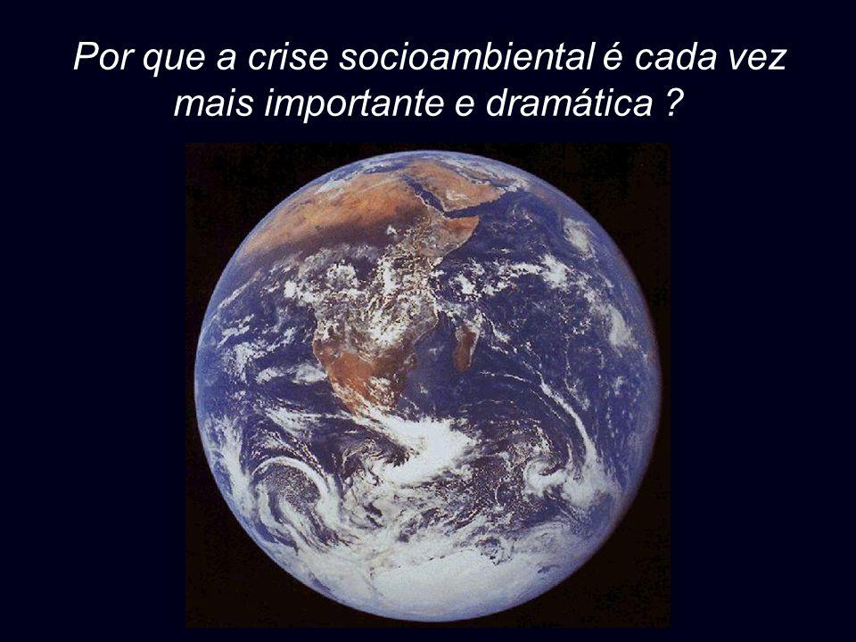 Por que a crise socioambiental é cada vez mais importante e dramática