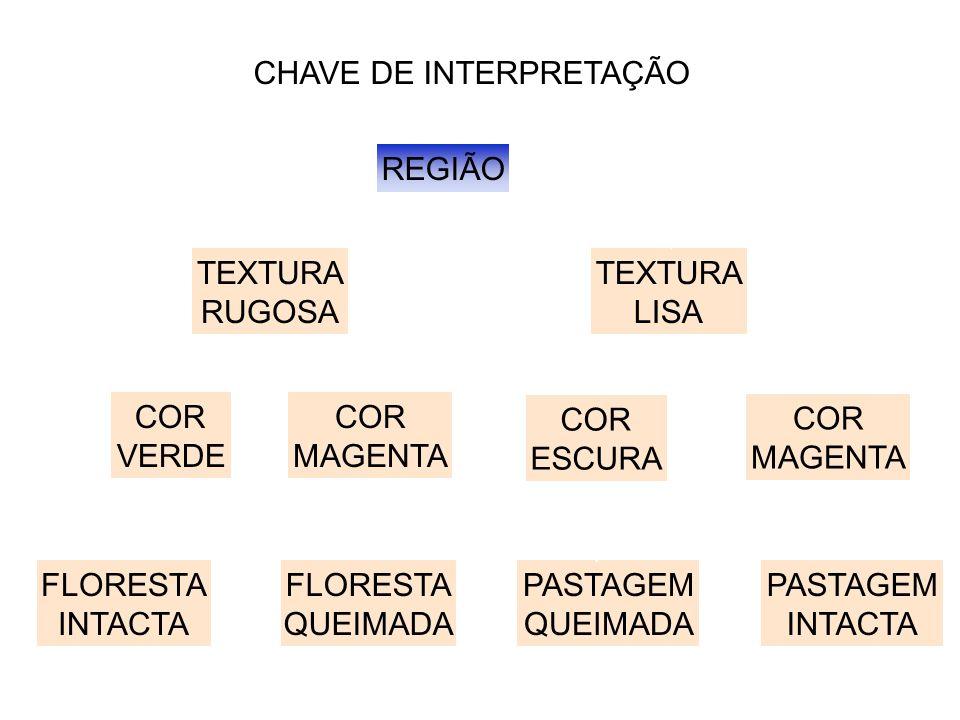 CHAVE DE INTERPRETAÇÃO