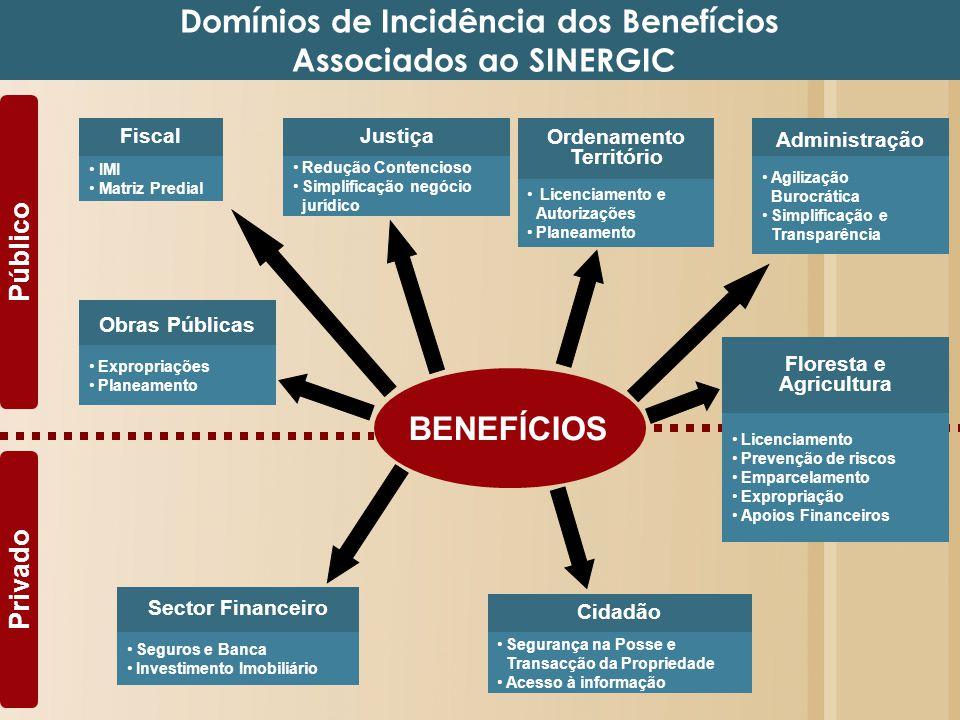 Domínios de Incidência dos Benefícios Associados ao SINERGIC