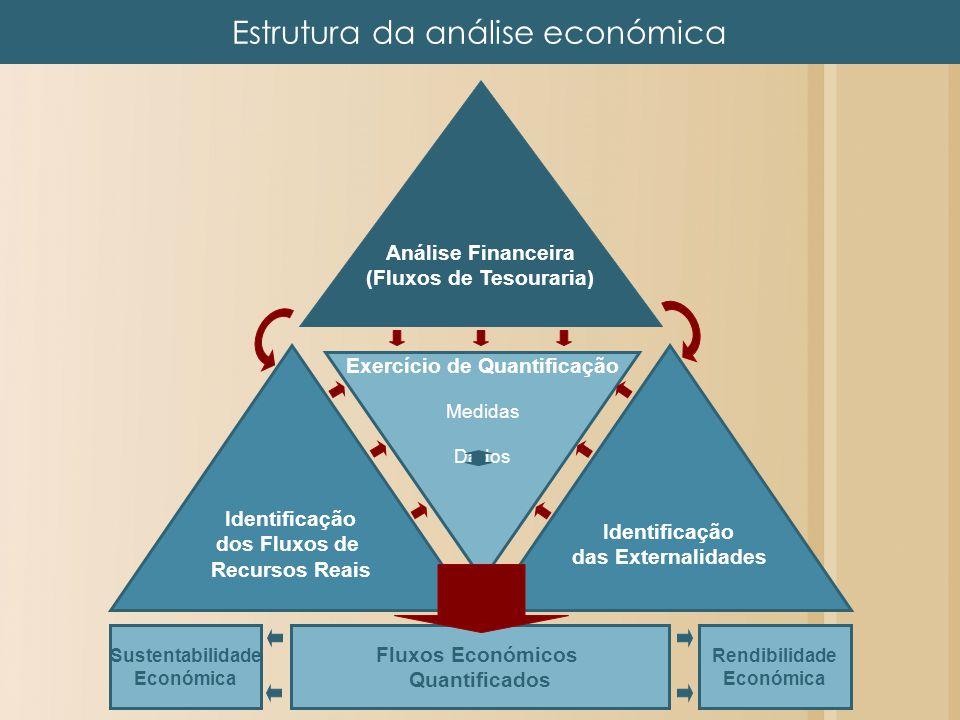Estrutura da análise económica