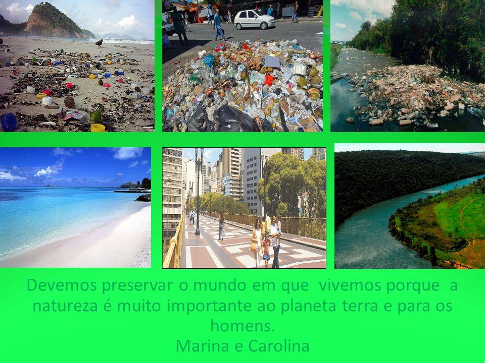 Devemos preservar o mundo em que vivemos porque a natureza é muito importante ao planeta terra e para os homens.