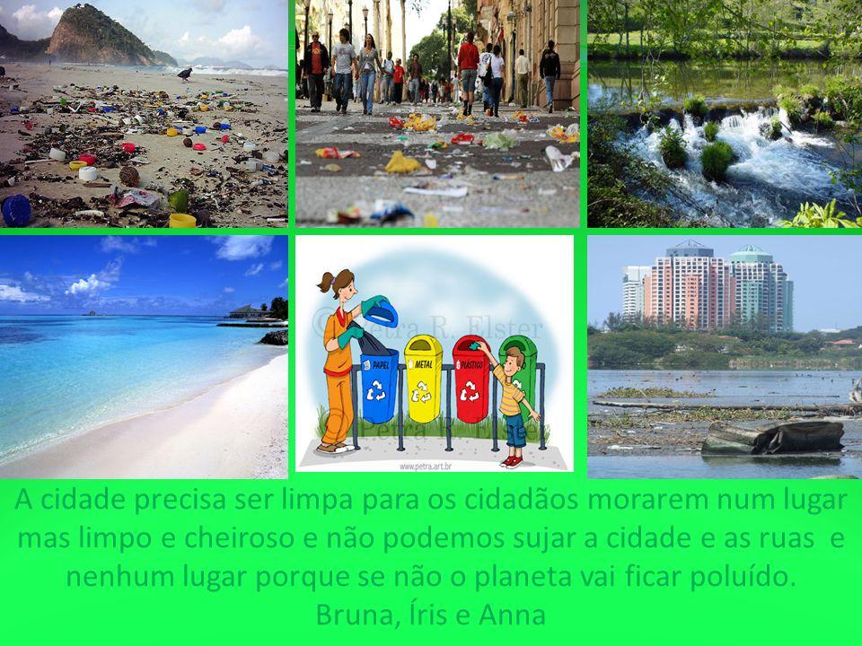 A cidade precisa ser limpa para os cidadãos morarem num lugar mas limpo e cheiroso e não podemos sujar a cidade e as ruas e nenhum lugar porque se não o planeta vai ficar poluído.