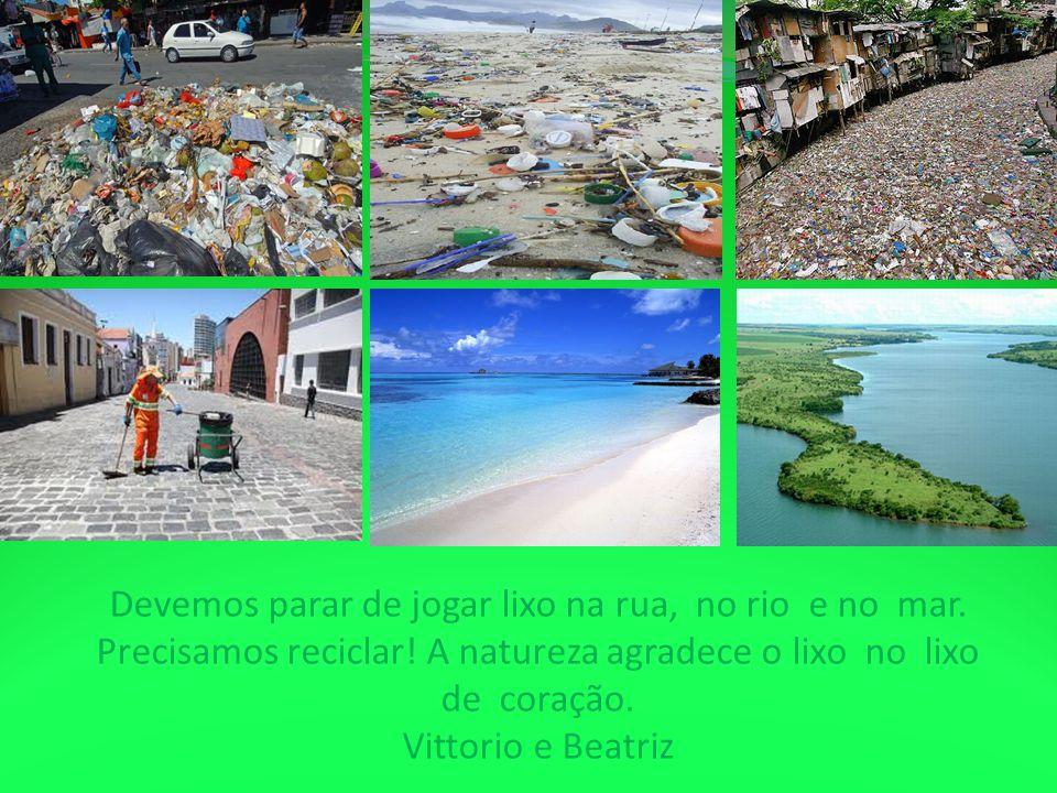 Devemos parar de jogar lixo na rua, no rio e no mar