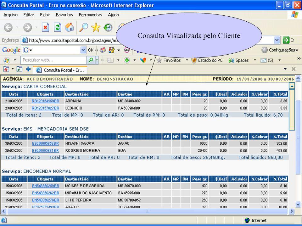 Consulta Visualizada pelo Cliente