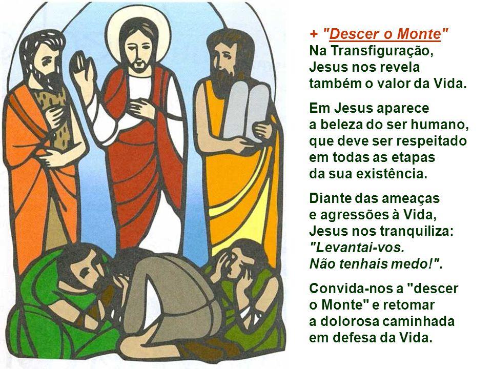 + Descer o Monte Na Transfiguração, Jesus nos revela também o valor da Vida. Em Jesus aparece. a beleza do ser humano,
