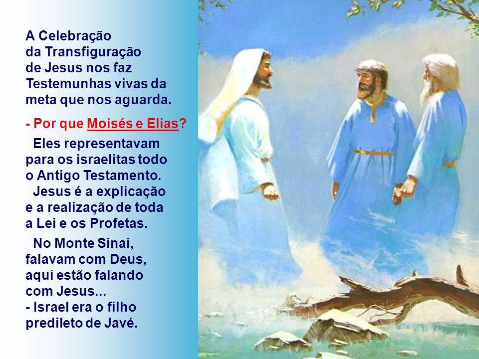 A Celebração da Transfiguração. de Jesus nos faz. Testemunhas vivas da meta que nos aguarda. - Por que Moisés e Elias