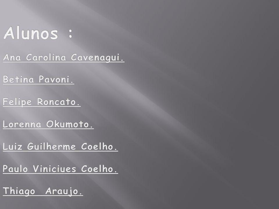 Alunos : Ana Carolina Cavenagui. Betina Pavoni. Felipe Roncato.