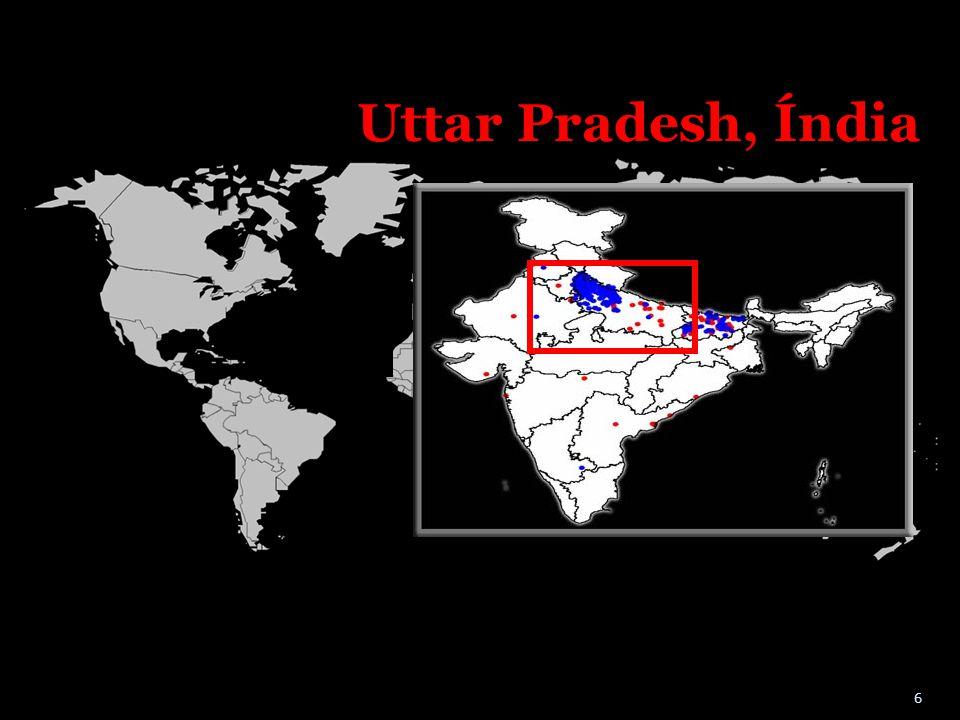 Uttar Pradesh, Índia A maior parte do sul da Índia está livre da pólio, como podem ver neste mapa.